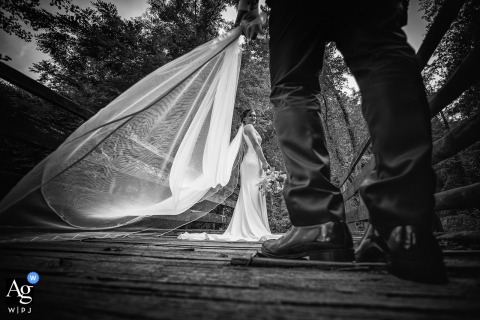 View thisgraceful Casella wedding day portrait of the bride with her long veil, held by the groom, which was a featured pictureamong the best wedding photography at Riccò del Golfo in La Spezia from the WPJA