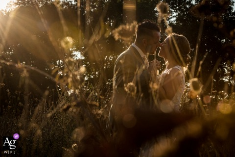 View thispicturesque Roosendaal wedding image showing couple is posing in the nature, with a low sun at the end of the day, which was a featured pictureamong the best wedding photography at Brasserie Visdonk from the WPJA