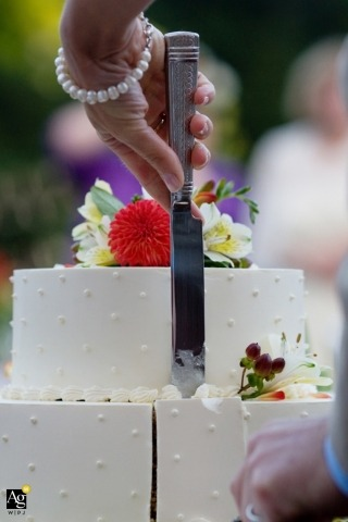 Seattle Wedding Photography | Image contains: cake, knife, detail shot, bride, hand