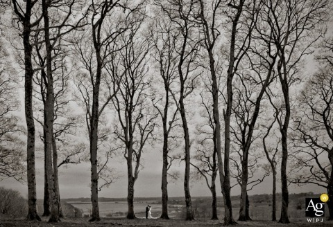 Ireland Fine Art Documentary Wedding Photographer | Image contains: black and white, trees, bride, groom, distance shot, lake