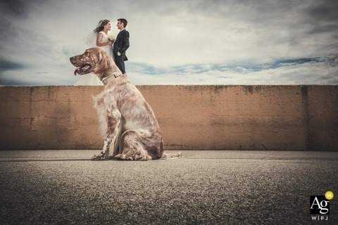 Ancona Trouwfotograaf | Afbeelding bevat: bloemen, boeket, hond, bruid, buitenshuis, bruidegom