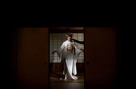 Fotografo di matrimoni Tracey Taylor di Tokyo, Giappone