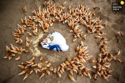 The bride and groom lay on the ground together surrounded by chickens in this wedding photo captured by a Netherlands photographer.