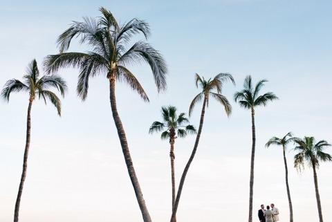 Photographe de mariage Dennis Berti de Basse Californie, Mexique