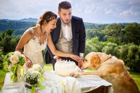 Wedding Photographer Fabio Mirulla of Arezzo, Italy