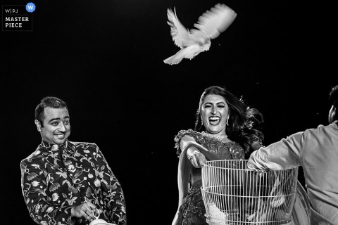Black and white photo of the bride and groom leaning back as a white dove is released from its cage by a Toronto, Ontario wedding photographer.