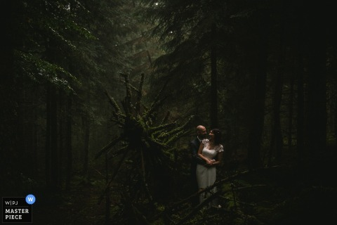Photo of the bride and groom in a dimly-lit forest by a France wedding photographer.