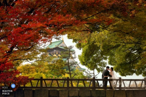 Shanghai wedding photographer captured this photo of a couple kissing under autumn foliage