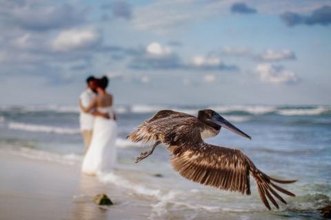 Wedding Photographer Melissa Mercado of Quintana Roo, Mexico