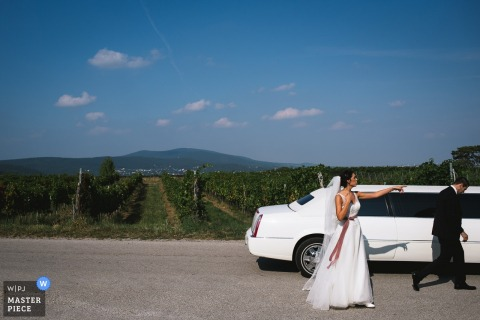 The bride stands pointing on the road outside of a white limo parked in front of a vineyard in this photo by a London, England wedding reportage photographer.