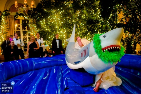 Photo of the bride slipping off of a mechanical shark by Charleston, SC wedding photographer.