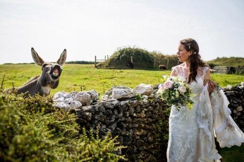 Wedding Photographer Anna Poole of Devon, United Kingdom