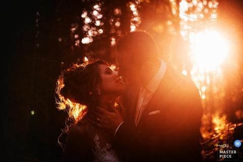 Fotograf ślubny Francji uchwycił to zdjęcie młodej pary całującej się w lesie, podczas gdy słońce świeci przez drzewa za nimi