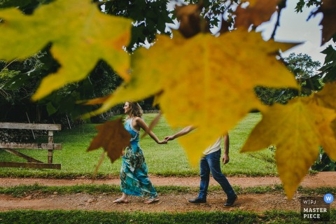 Brazil wedding photographer created this image of bride and groom holding hands while looking through golden foliage