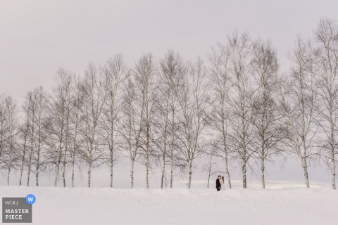 Taipei wedding photographer captured this distant image of a bride and groom standing in the snow in front of a row of leafless trees