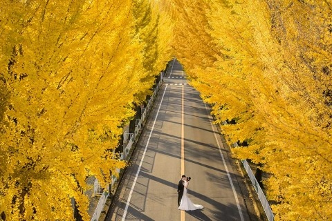 Wedding Photographer Minifeel Lu of , Taiwan
