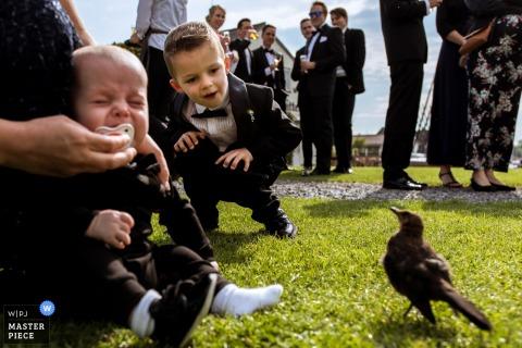 Un enfant en pleurs et un enfant en bas âge observe avec curiosité un oiseau noir qui s'évanouit lors d'une réception de mariage en plein air capturée par un photographe de mariage à Rotterdam