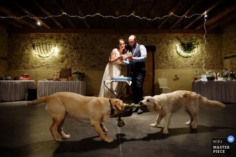 Le photographe de mariage du Lot-et-Garonne a capturé cette photo idiote de la mariée et du marié lisant un discours pendant que leurs chiens jouent à la corde au premier plan