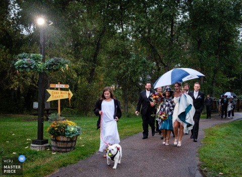 Montana wedding photographer captured this image of the bride walking under an umbrella while holding up her dress to protect it from the wet pavement as little girl in a white dress walks an english bulldog in front