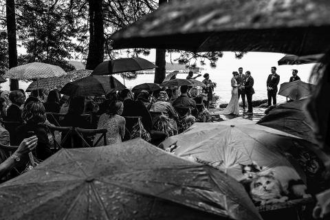 Shaunte Dittmar, del norte de California, es un fotógrafo de bodas documental que está bien preparado para capturar una ceremonia de boda al aire libre bajo la lluvia, con muchas sombrillas.
