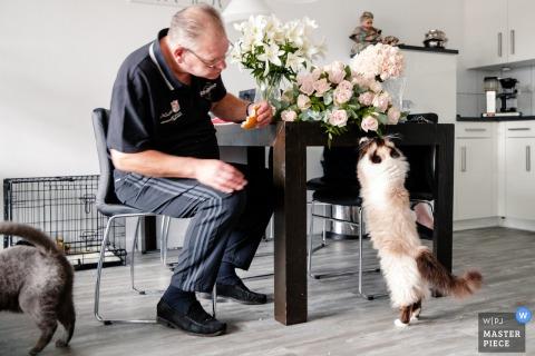 Dit beeld van een bloemist die de laatste hand legt aan de bloemen van de receptie terwijl katten hem lastig vallen, werd gevangen door een Noord-huwelijksfotograaf
