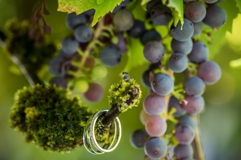 David Zaoui of Florida is a Wedding Photographer and shoots ring details