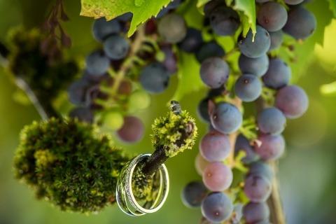 David Zaoui van Florida is een trouwfotograaf en schiet ringdetails