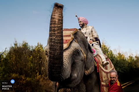 The groom rides and elephant in this photo by a Washington, D.C. wedding photographer.