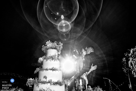 Black and white photo of the bride and groom kissing in front of their wedding cake with lens flare. Taken by a Calabria wedding photographer.