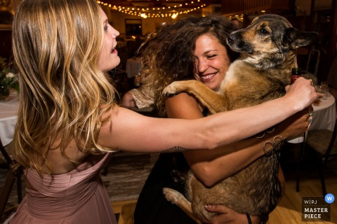 A woman picks up and holds a dog during the reception as another goes to pet it in this photo by a Missoula, MT wedding photographer.