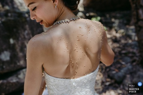 Detail photo of the bride's back covered in pollen by a New South Whales wedding photographer.