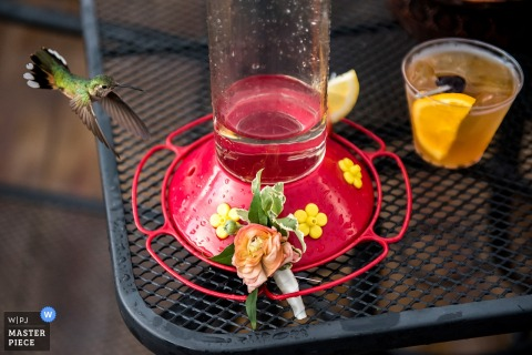 A humming bird flies around a feeder on a table next to a guest's drink in this photo by a Boulder, CO wedding photographer.