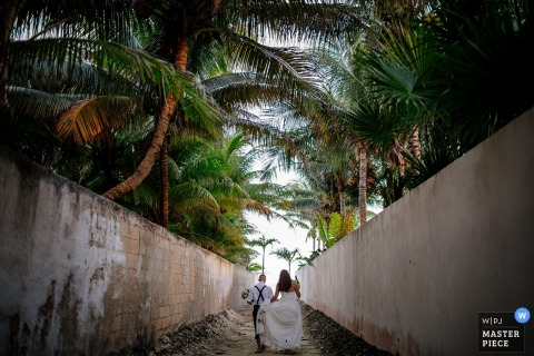 The bride and groom walk hand in hand through rows of palm trees in this photo by a Playa del Carmen wedding photographer.