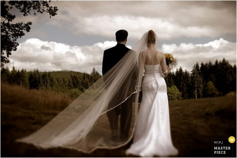 picture of bride and groom from behind