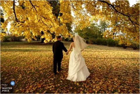 Wedding Photographer Anne Ryan of Illinois, United States