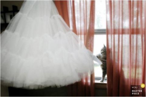 Wedding Photographer Kim Bednarski Anderson of Wisconsin, United States
