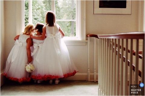 Wedding Photographer Bradley Hanson of Minnesota, United States