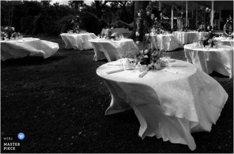 Wedding Photographer Marianne Todd of ,