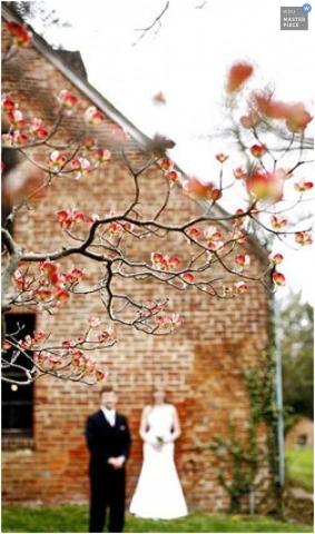 Wedding Photographer Jennifer Domenick of Maryland, United States