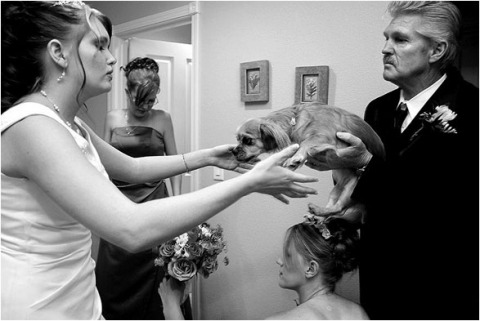 Huwelijksfotograaf Tina Wright uit Arizona, Verenigde Staten