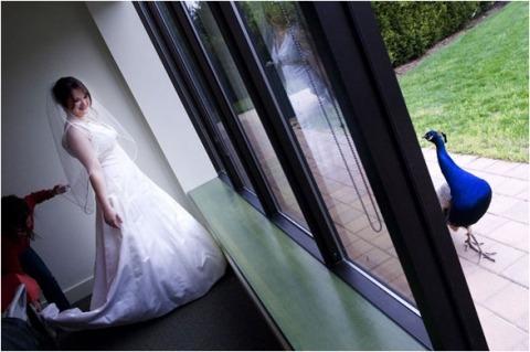Huwelijksfotograaf Kristin Reimer uit New Jersey, Verenigde Staten