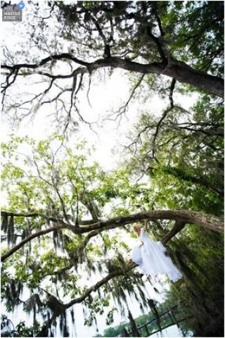 Wedding Photographer Paul Johnson of Florida, United States