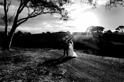 Wedding Photographer Brett Hartwig of South Australia, Australia