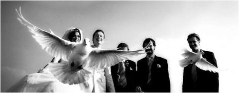 Wedding Photographer Mark Gardner of ,