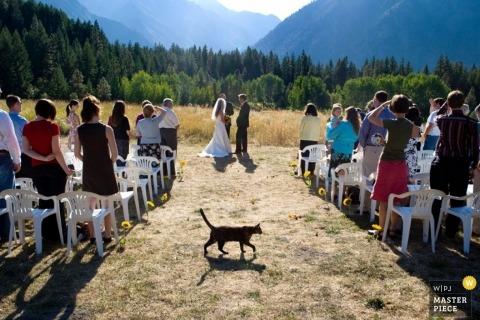 Wedding Photographer Larry Brunt of Washington, United States