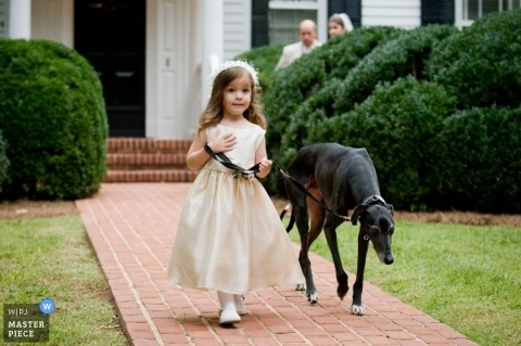 Wedding Photographer Tim Harman of Georgia, United States