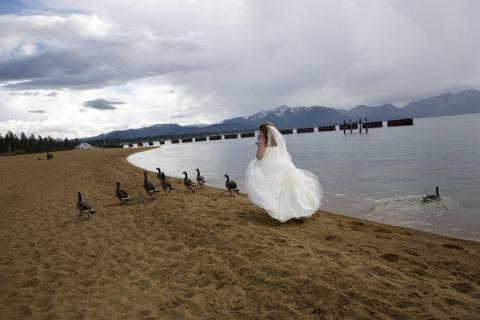 Fotografo di matrimoni Joyce Perlman di California, Stati Uniti