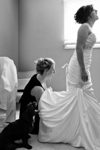 Photographe de mariage Timothy Forbes de l'Ontario, Canada