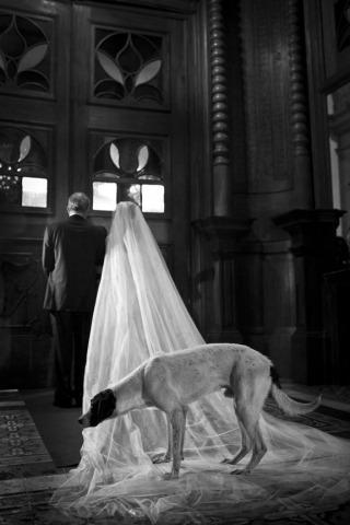Photographe de mariage Vinicius Matos de Minas Gerais, Brésil