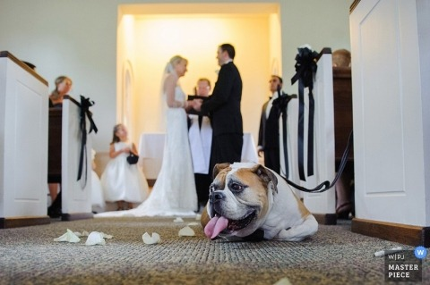 Wedding Photographer Razvan Horeanga of Iowa, United States
